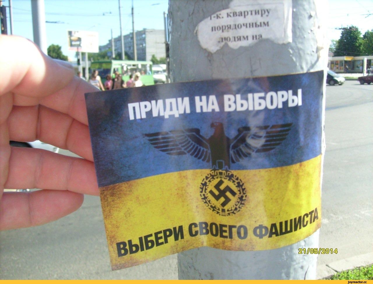 прикольные картинки выборы на украине растительность средней длины