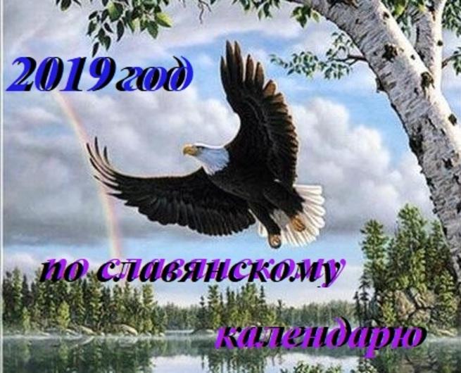 Поздравление днем, анимация с наступающим новым годом 2019 парящего орла