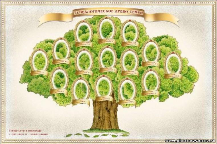 Скачать шаблон древо моей семьи