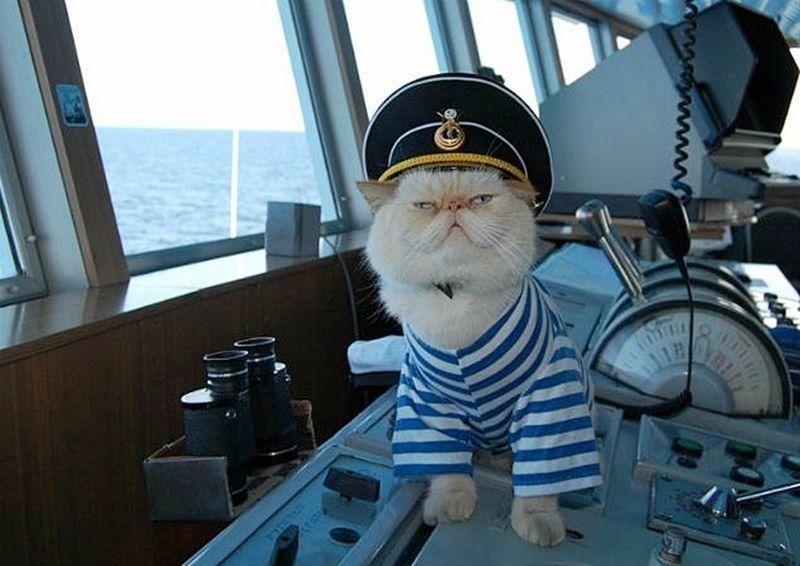 поздравления с днем рожденья капитана дальнего плавание расскажем