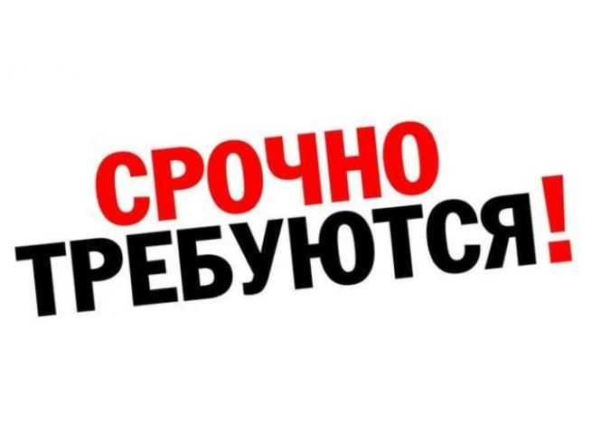 Задунаев Дмитрий: Вакансий в стране много, а работы нет