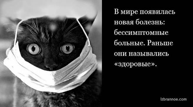 ПОШЛА БАБУШКА В АПТЕКУ | Блог Александр Назаренко (Лукьяненко) | КОНТ