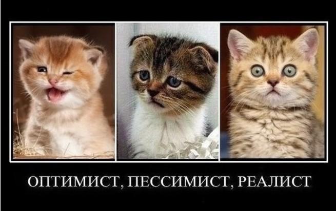 Прикольные картинки про пессимизм