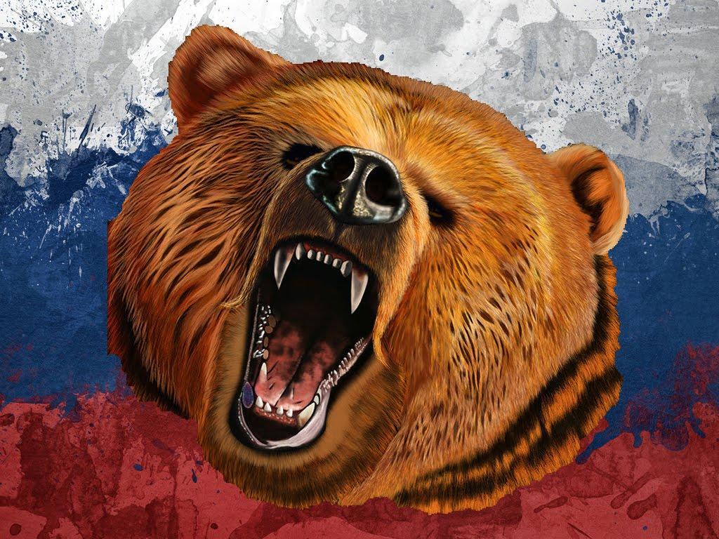 Флаг и медведь картинки