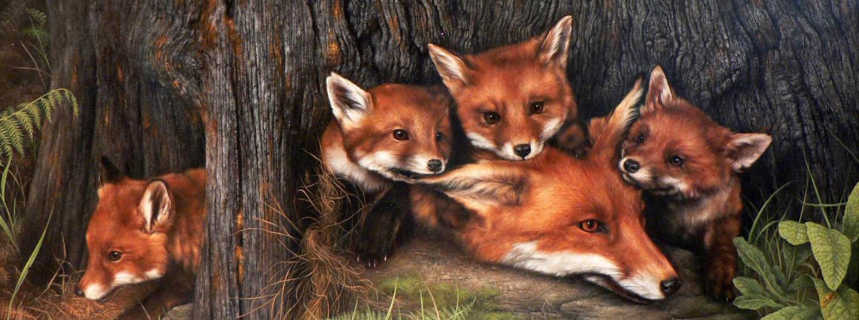 Картинки для детского сада лиса с лисятами