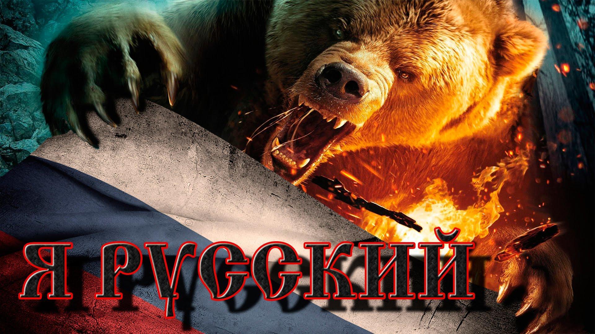 русский медведь обои на телефон каким причинам возникают